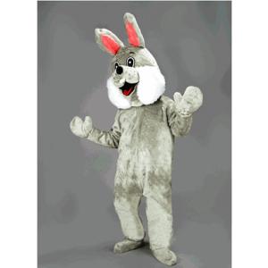 Graa kanin