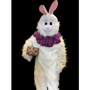 hvid kanin
